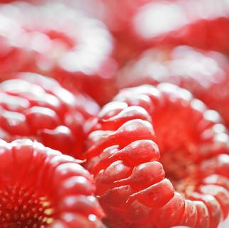 Raspberries, 2021