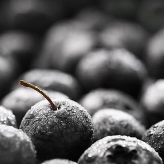 Blueberry, 2018