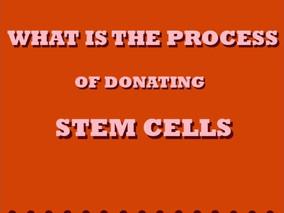 Stem Cell/Bone Marrow Donation