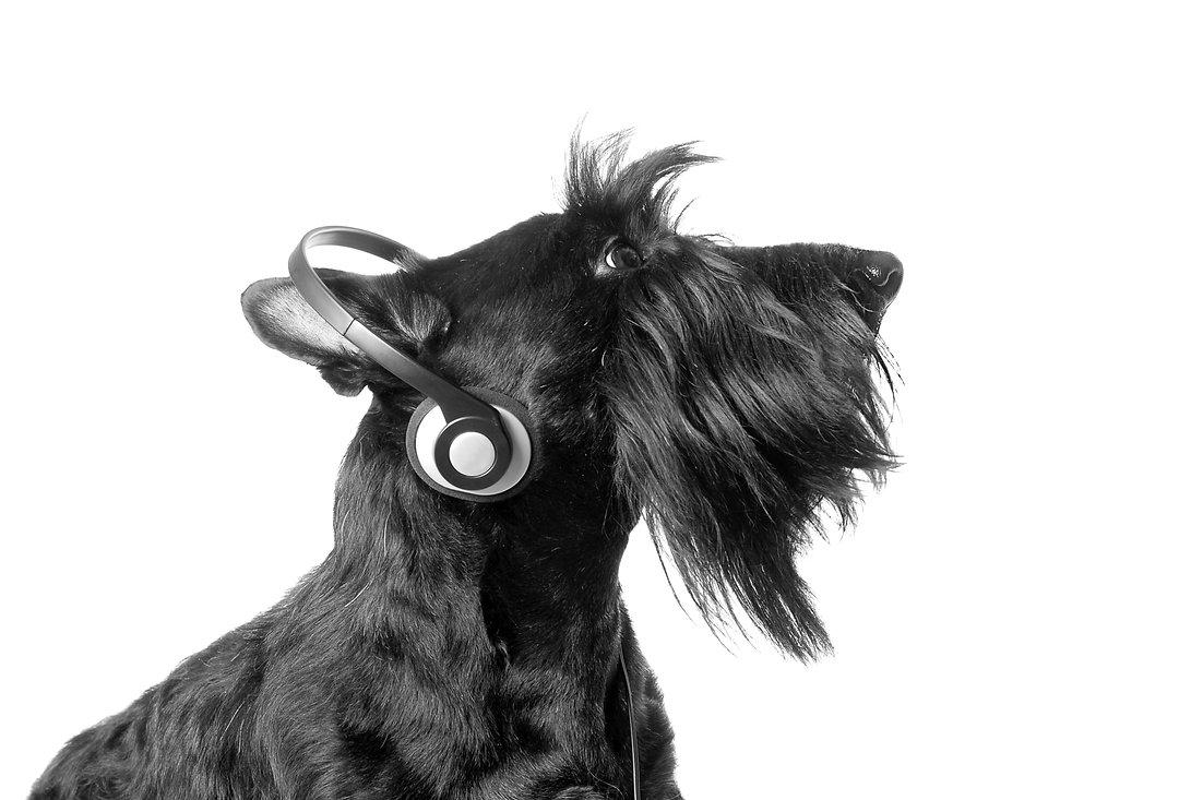 listening-to-music-PD24LW5_edited_edited