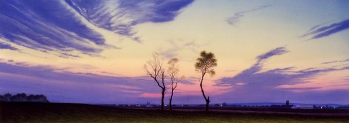 Twilight Trees