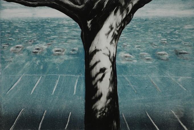 Tree of Paradise 1