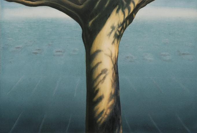 Tree of Paradise 2