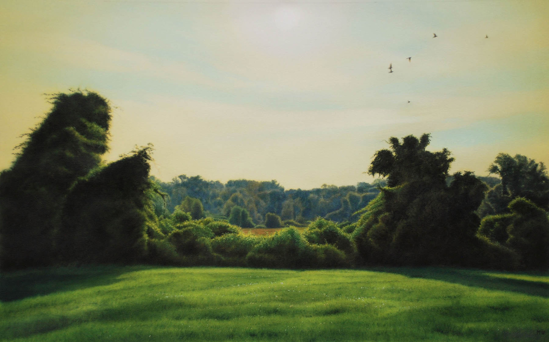 Hedgerow Topiary