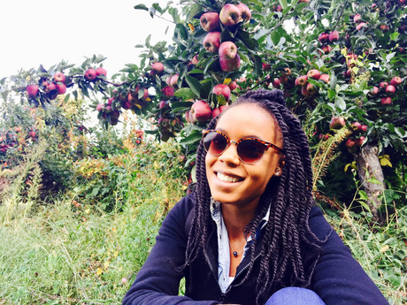 Picking Apples in the Big Apple