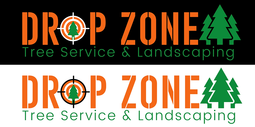 Copy of Drop Zone Logo Changes.png