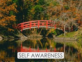 JH M2 Self Awareness.png