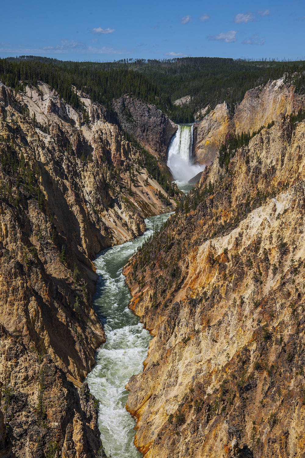 Lower Falls and the Yellowstone River