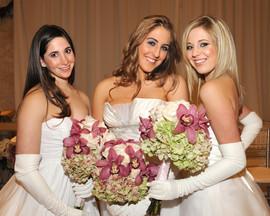 Lovely Ladies.jpg