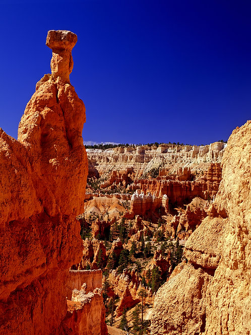 Hoodoo from Queen's Garden Trail, Bryce Canyon NP