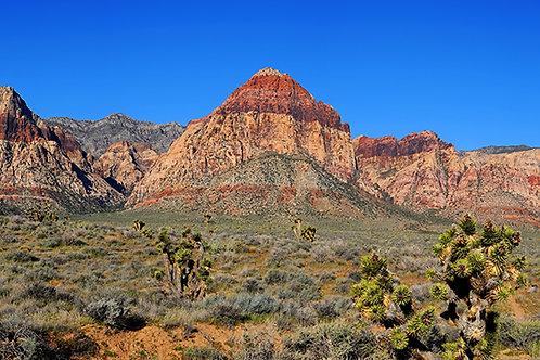 Wilson Cliffs Panorama
