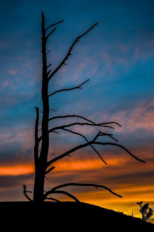 Yellowstone Sunset