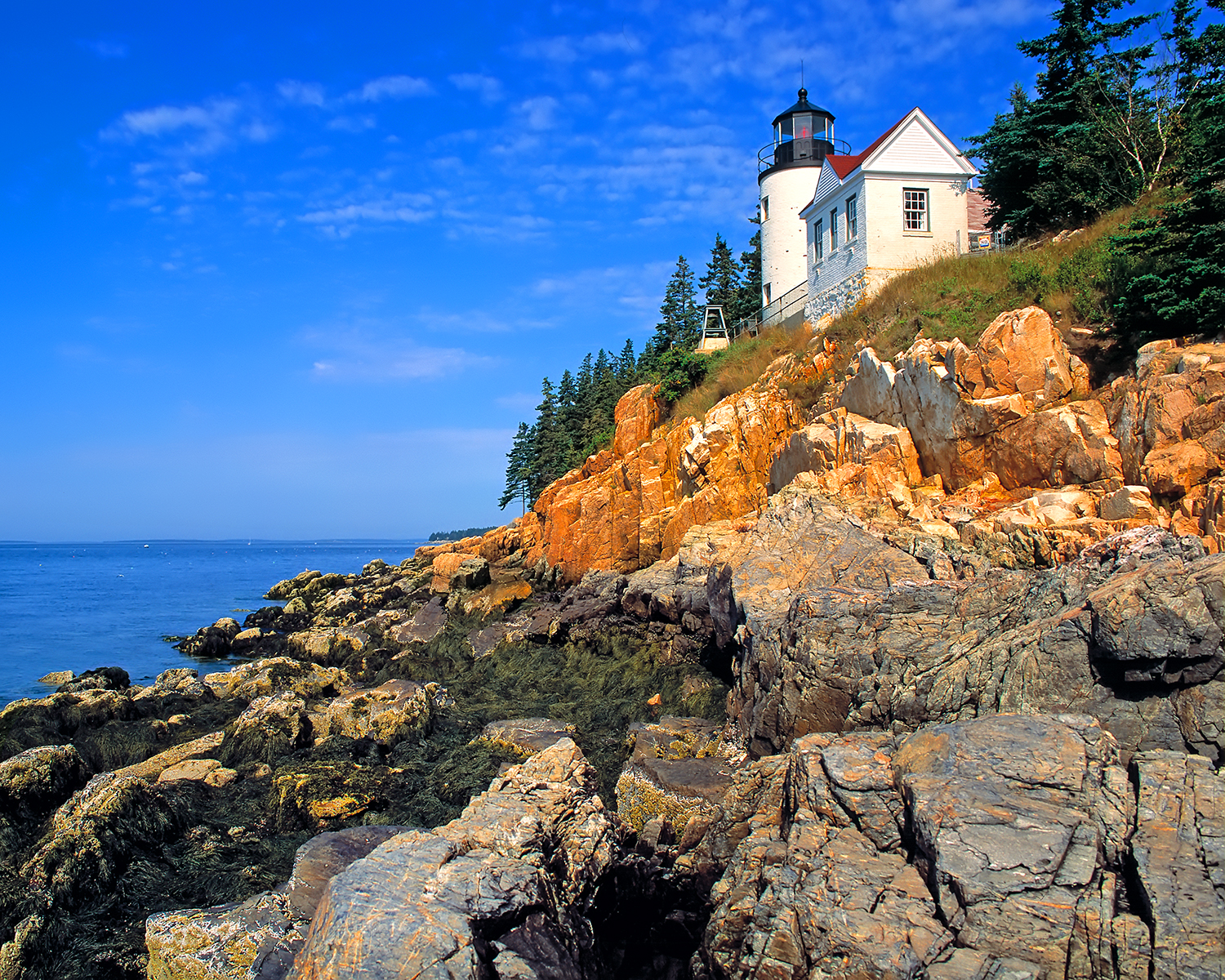 Bass Harbor Head Lighthouse, Acadia NP
