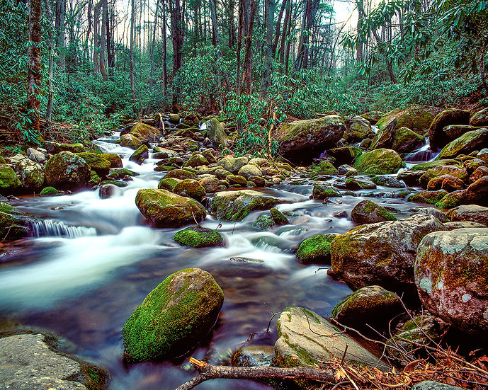 Roaring Fork 1, Great Smoky Mtns National Park