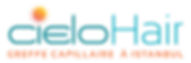 cielohair_logo-01.png