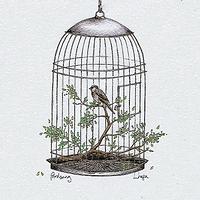 Birdsong Single artwork