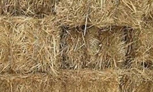 Small-Hay-Bales-X-15.jpg