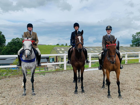 Dyfnog Ex-racehorses