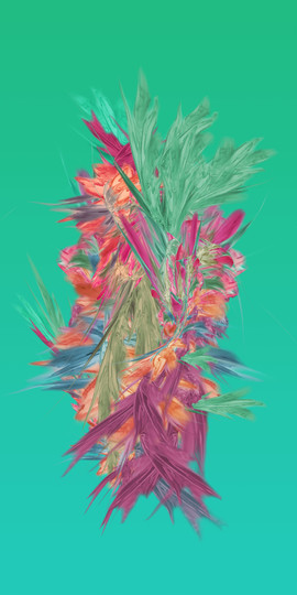 Botanik Series 04, 2020