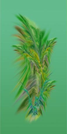 Botanik Series 07, 2020