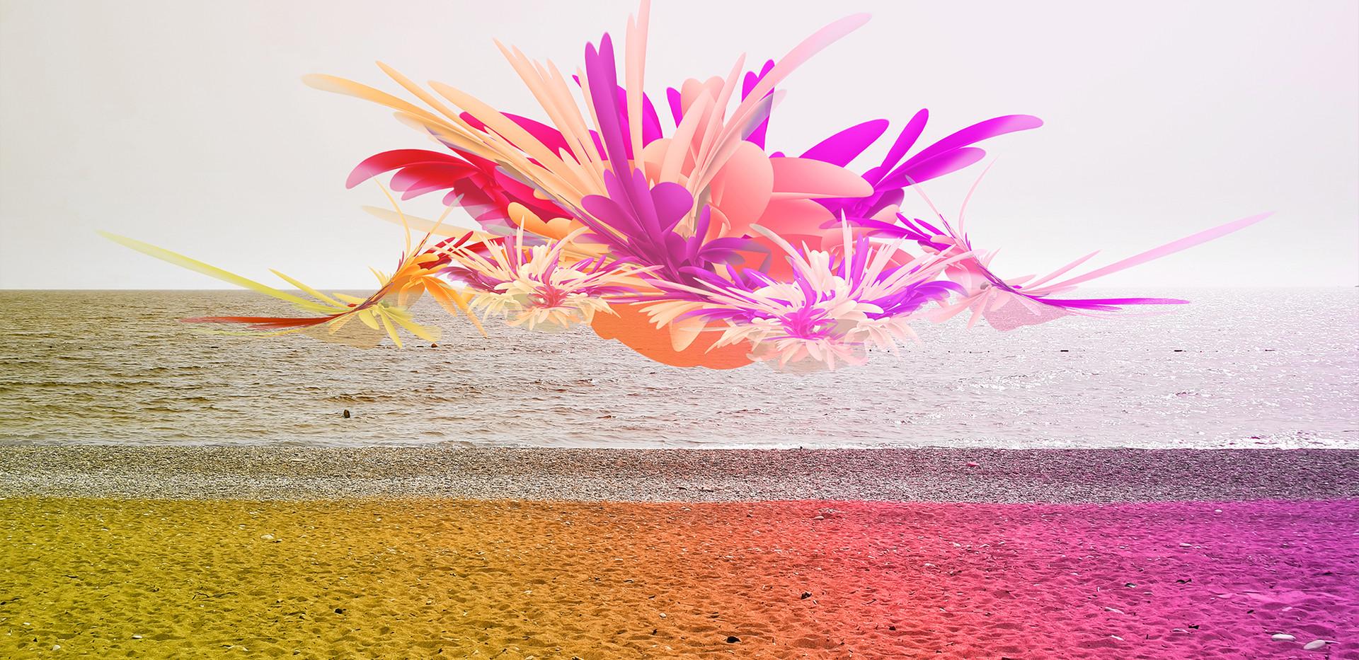 corals4.jpg