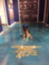 STAINED BLUE CONCRETE FLOOR, BUSINESS LOGO IN FLOOR, MUSEUM FLOOR