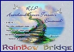 Rainbow Bridge - Emanuel.jpg