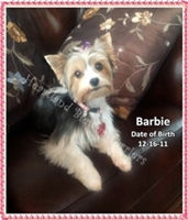 PPP 4-2013 Barbie2.jpg