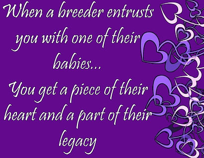 breeder%20legacy_edited.jpg