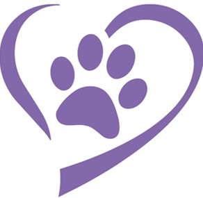 Paws for Puppy Tales - October 2020