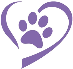 Paws for Puppy Tales - December 2020