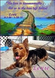 5-30-18 RESIZED Lexie for website.jpg