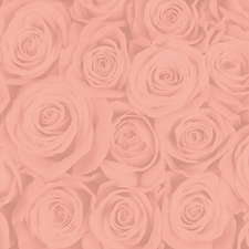 rosesbg.png