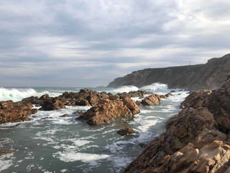 Local & healthy living in South Africa---Mossel Bay