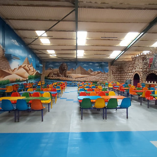 Camel Creek Soft Play Interior Hand Painted Mural