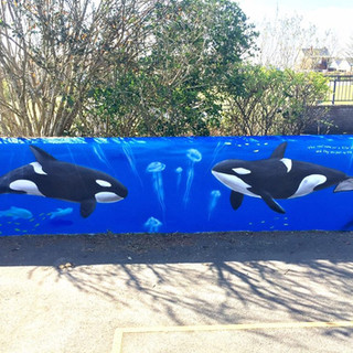Underwater Themed Exterior Hand Painted Mural