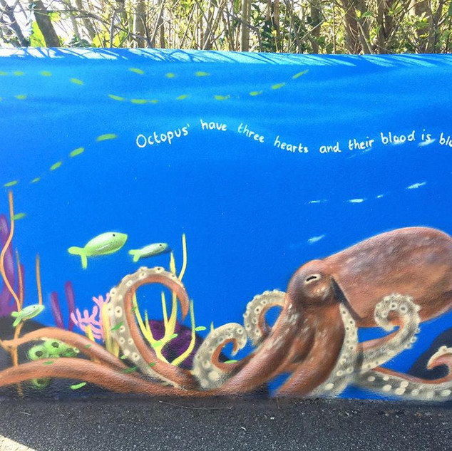 Underwater Facts Exterior Hand Painted Mural