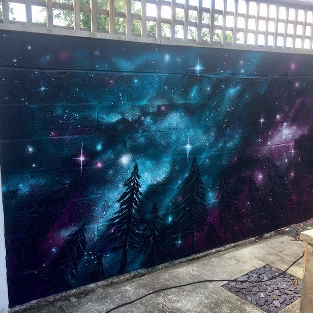 Galaxy Exterior Hand Painted Mural