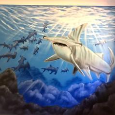 Underwater Shark Interior Hand Painted Mural