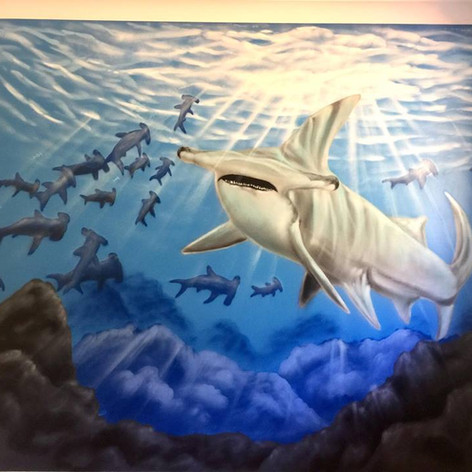 Underwater Shark Interior Hand Painted Mural