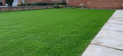 Artificial Lawn.jpg
