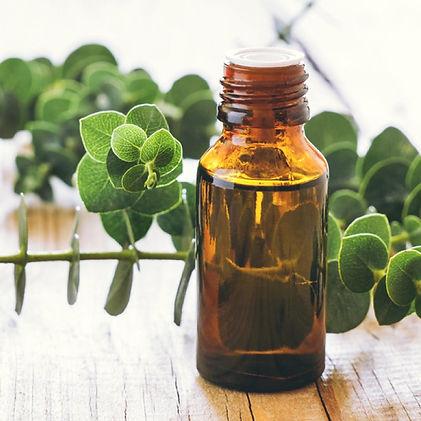 Eucalyptus Oil for skincare