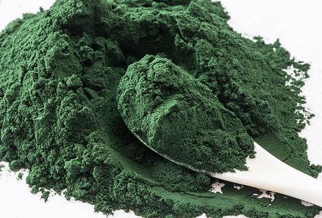 blue green algae for skincare
