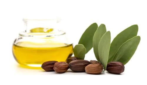 jojoba seed oil for skincare