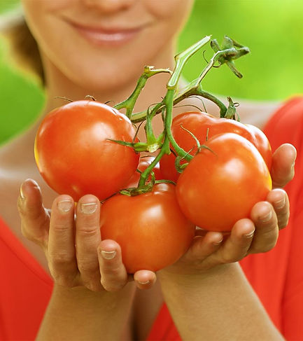tomato seed oil for skincare