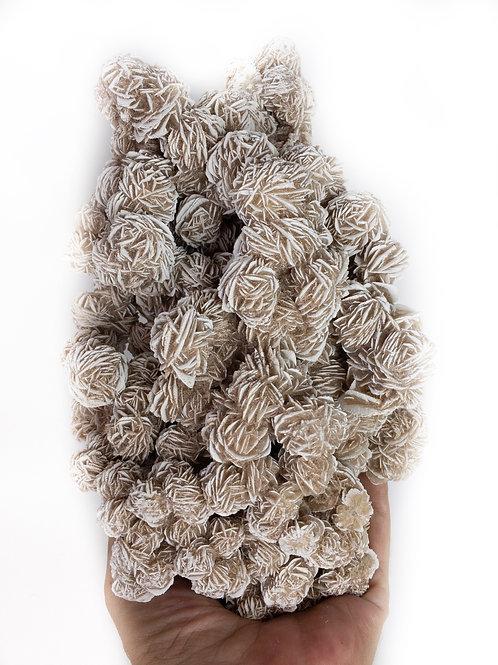 Selenite Desert Rose Natural Specimen 2.7 Lb