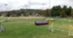 Field_3643.jpg