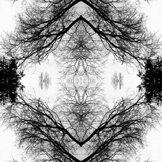 Mirror1_6404.jpg
