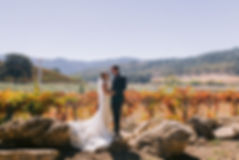 Cole+Reed ~ Married-3.jpg