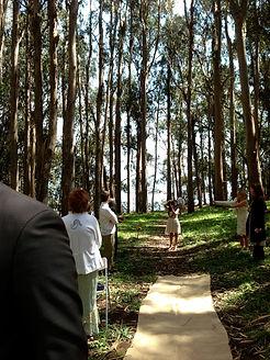 Paul Howell, San Simeon Wedding Officiant